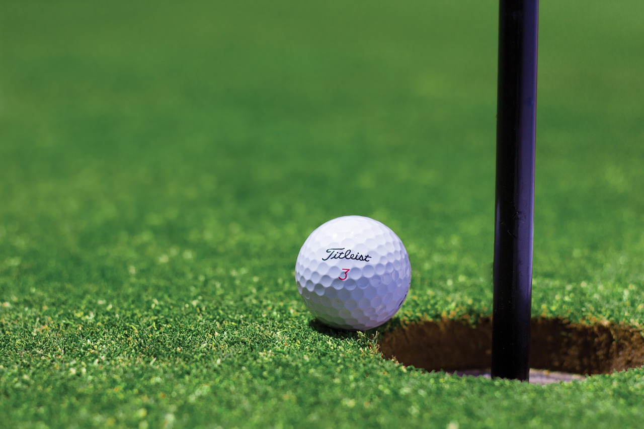 golf, golf ball, hole